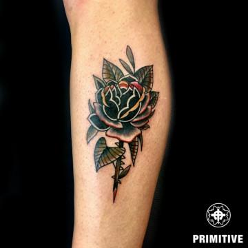 rose traditional color orazio